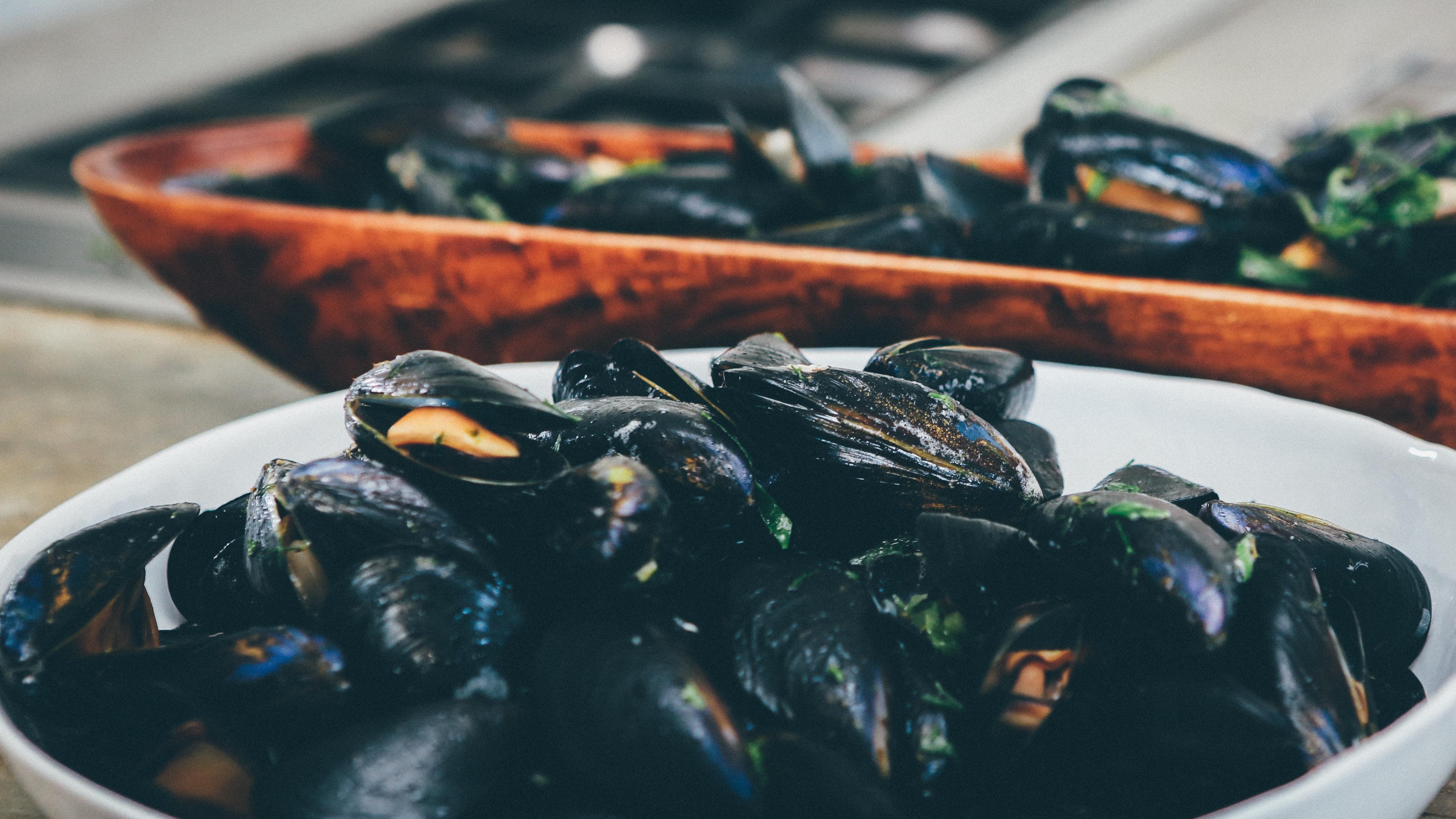 dove mangiare pesce a Brescia